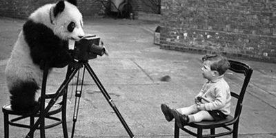 Ημέρα Φωτογράφισης!